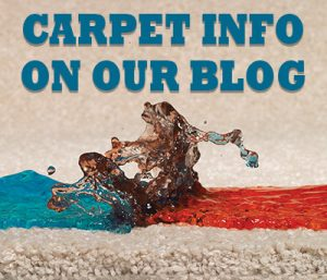 Carpet Info on our Blog