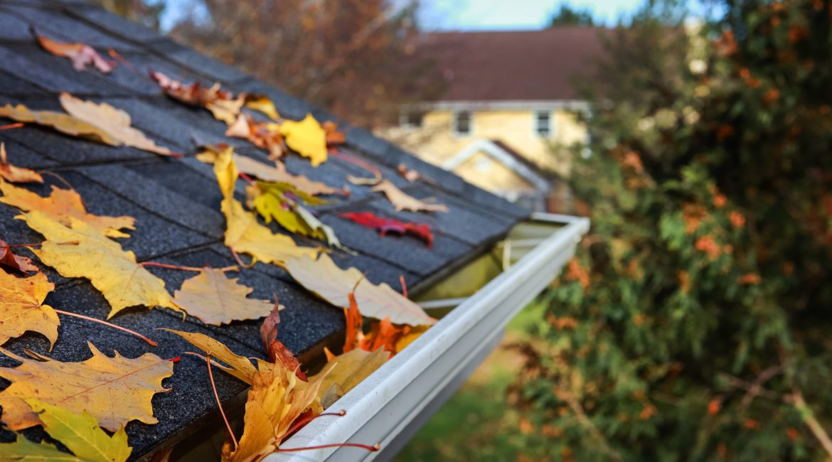 Why Fall Is the Best Time for Roof Repair